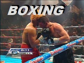 boxing feeds