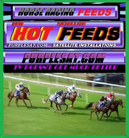 HORSE RACING FAST FEEDS PURPLESAT