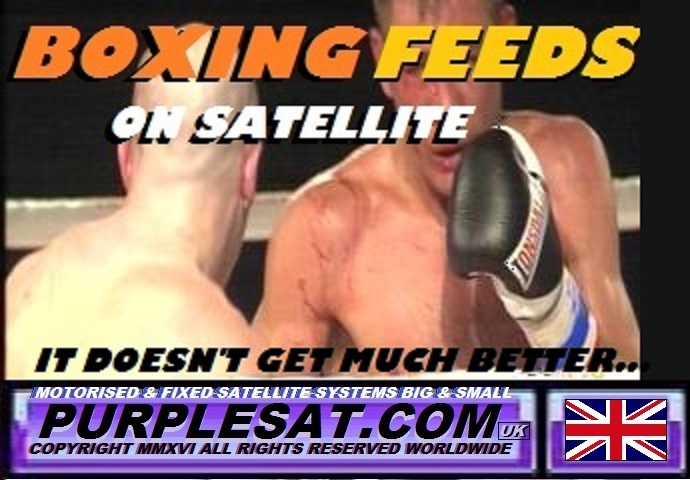 boxing satellite feeds purplesat